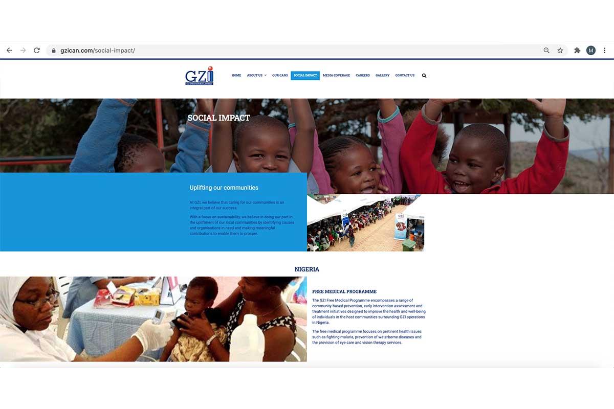 GZI social impact